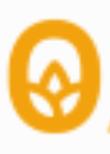 O of OASIIS logo